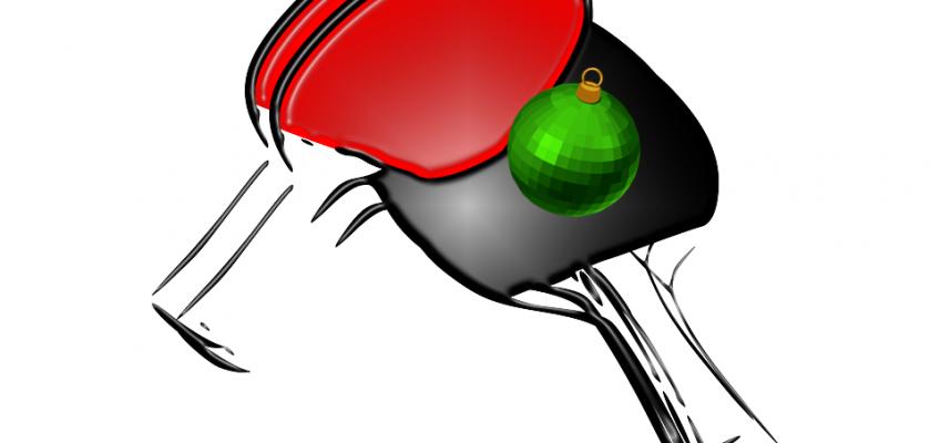 Oddílový Vánoční turnaj